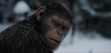 "Andy Serkis in Twentieth Century Fox's ""War for the Planet of the Apes."""